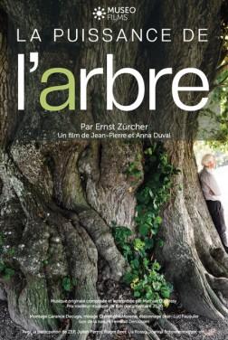 La Puissance de l'arbre avec Ernst Zürcher (2020)